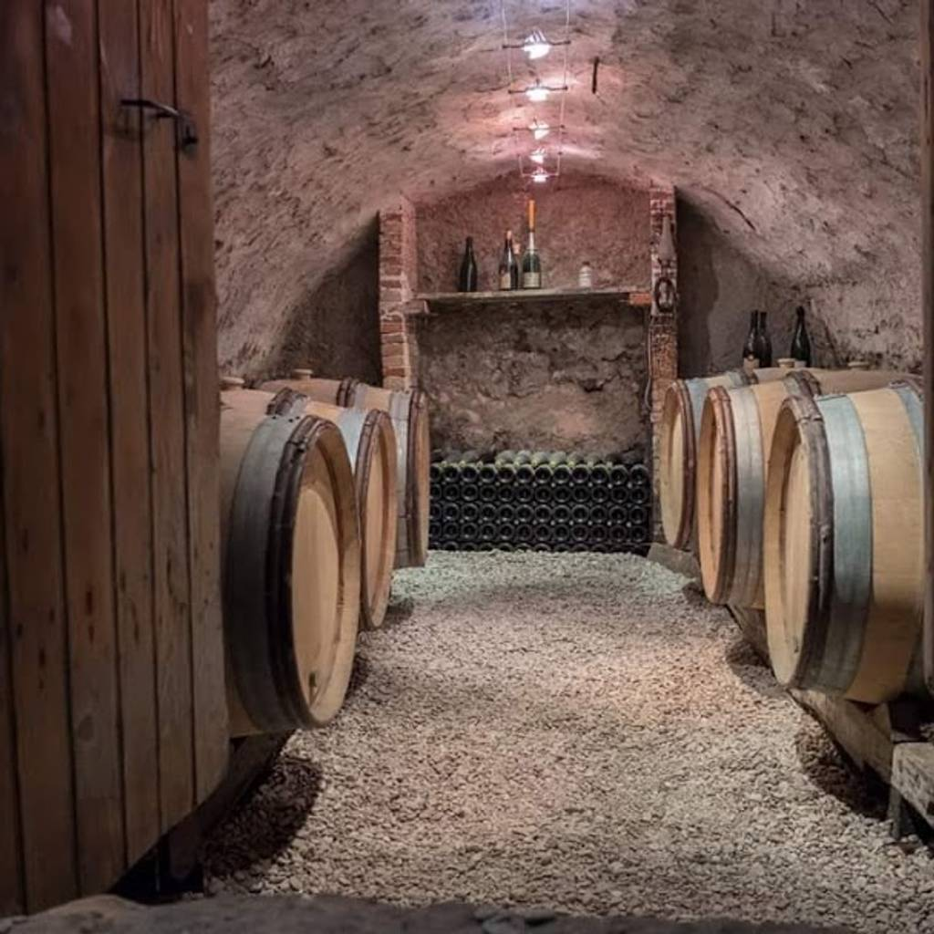 - Visit of the oldest wine press of the AOC Champagne