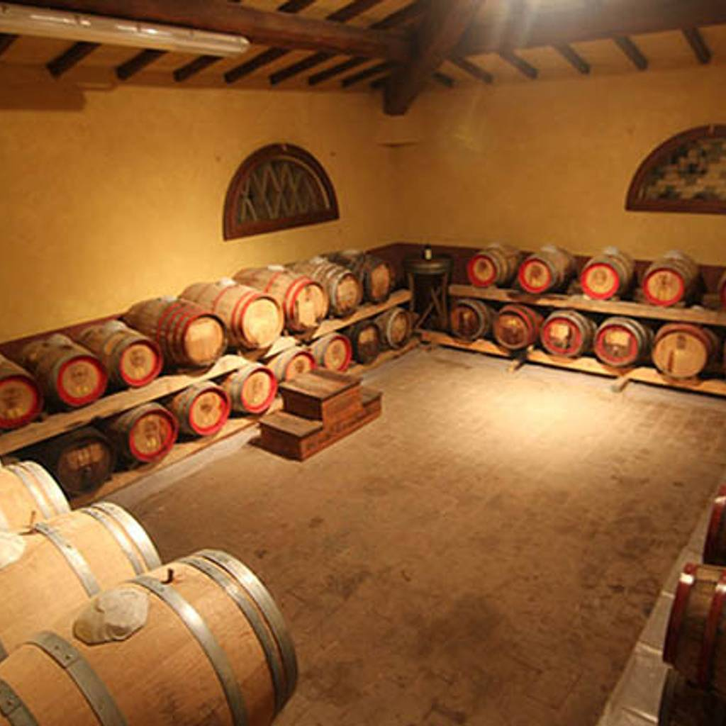 - Wine Tour Experience