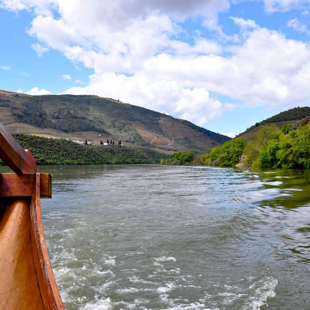 - Vale do Douro: Degustação de Vinhos, Passeio de Barco e Almoço