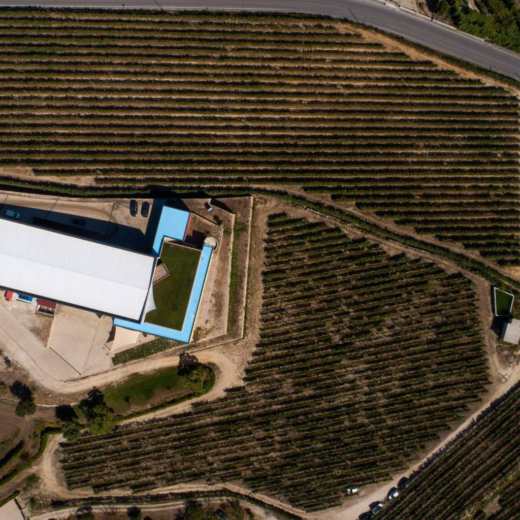 - Selection Tasting at Quinta de Santa Cristina - Vinho Verde