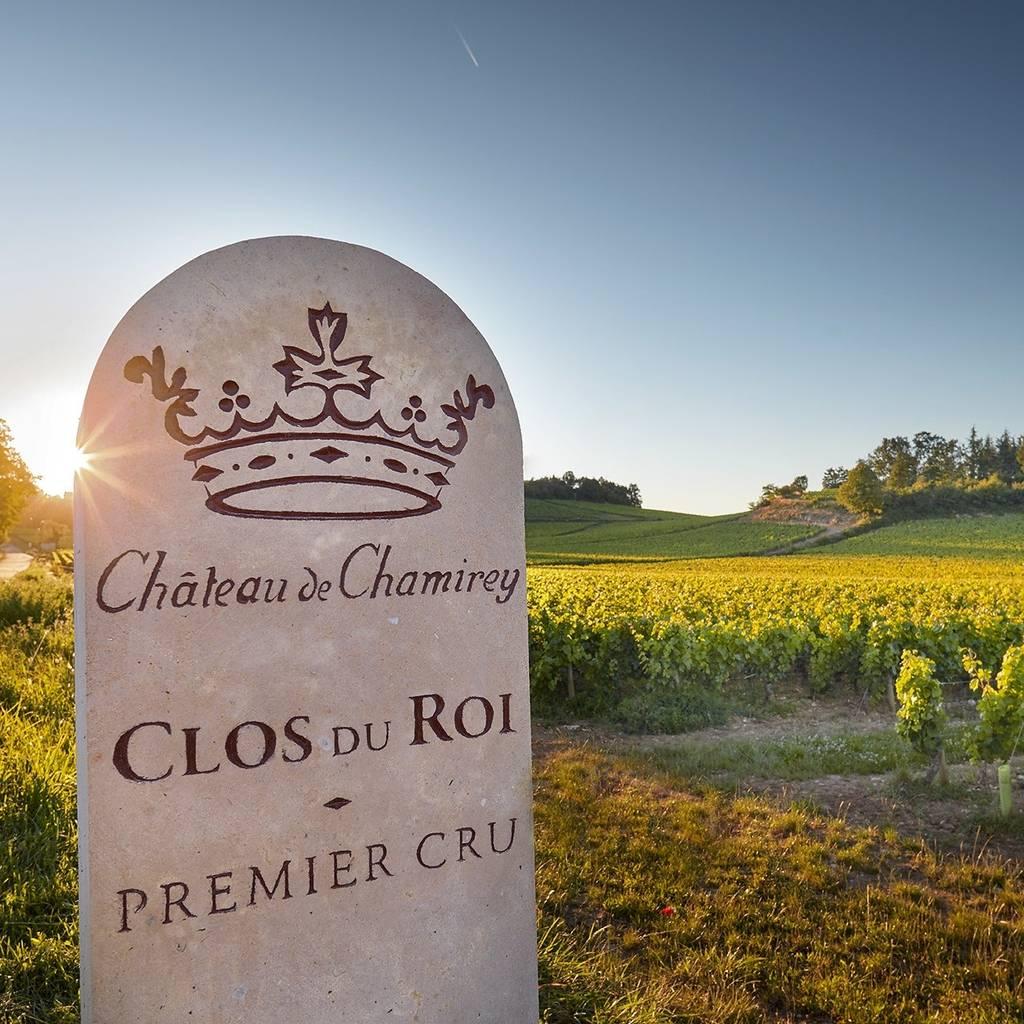 Gateway in the vineyard