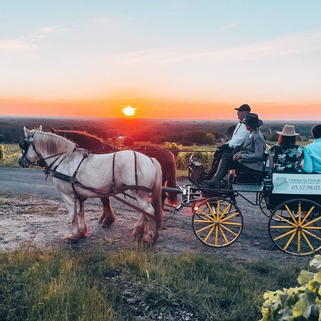 - Sunset carriage ride
