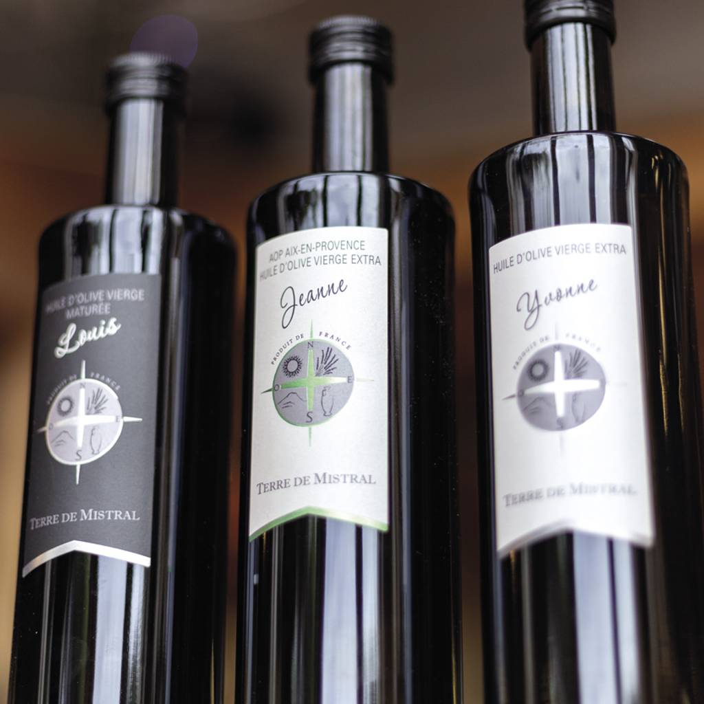 - Guided tour of our wine cellar and olive oil mill, followed by a tasting