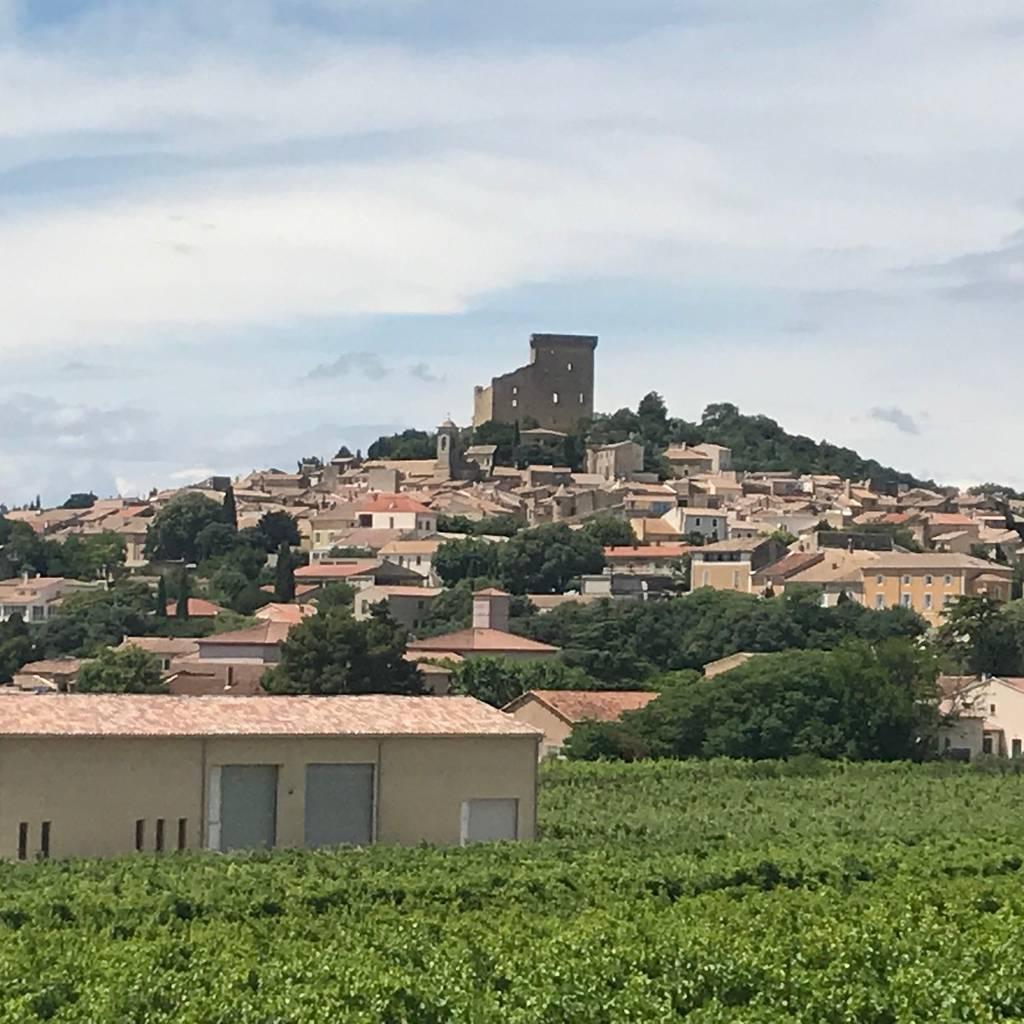 - Châteauneuf-du-Pape wine tour