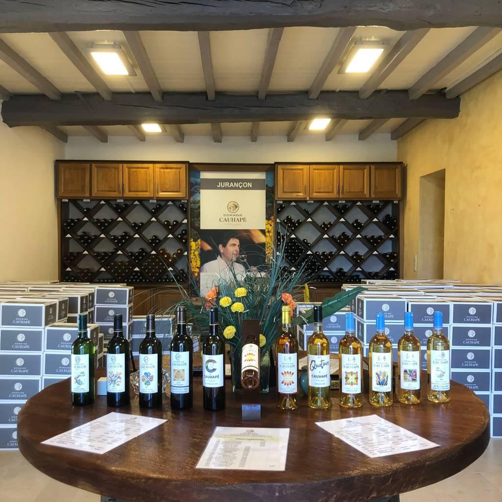 - Cata: Descubrimiento de los vinos de la finca
