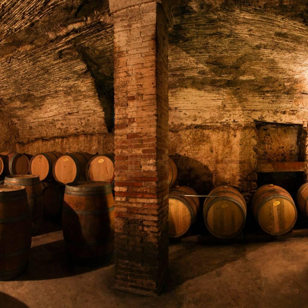- Visit and wine tasting