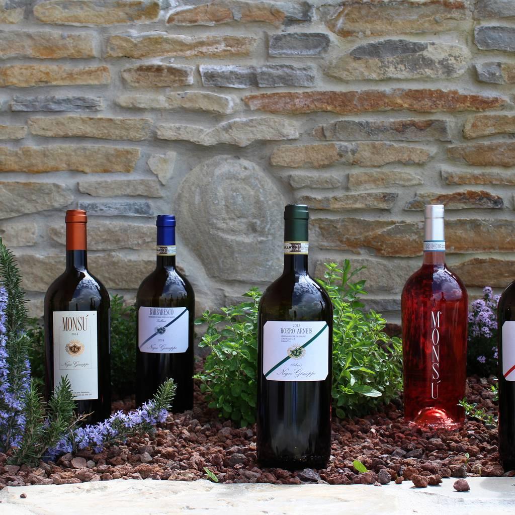 """- """"Pulin"""" wine tasting"""