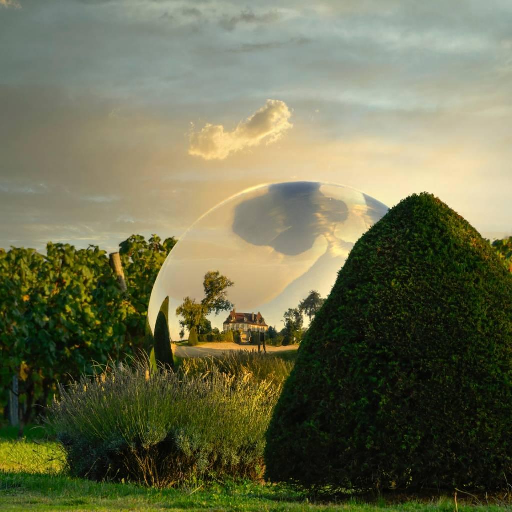 Terre de Vignes et d'Art