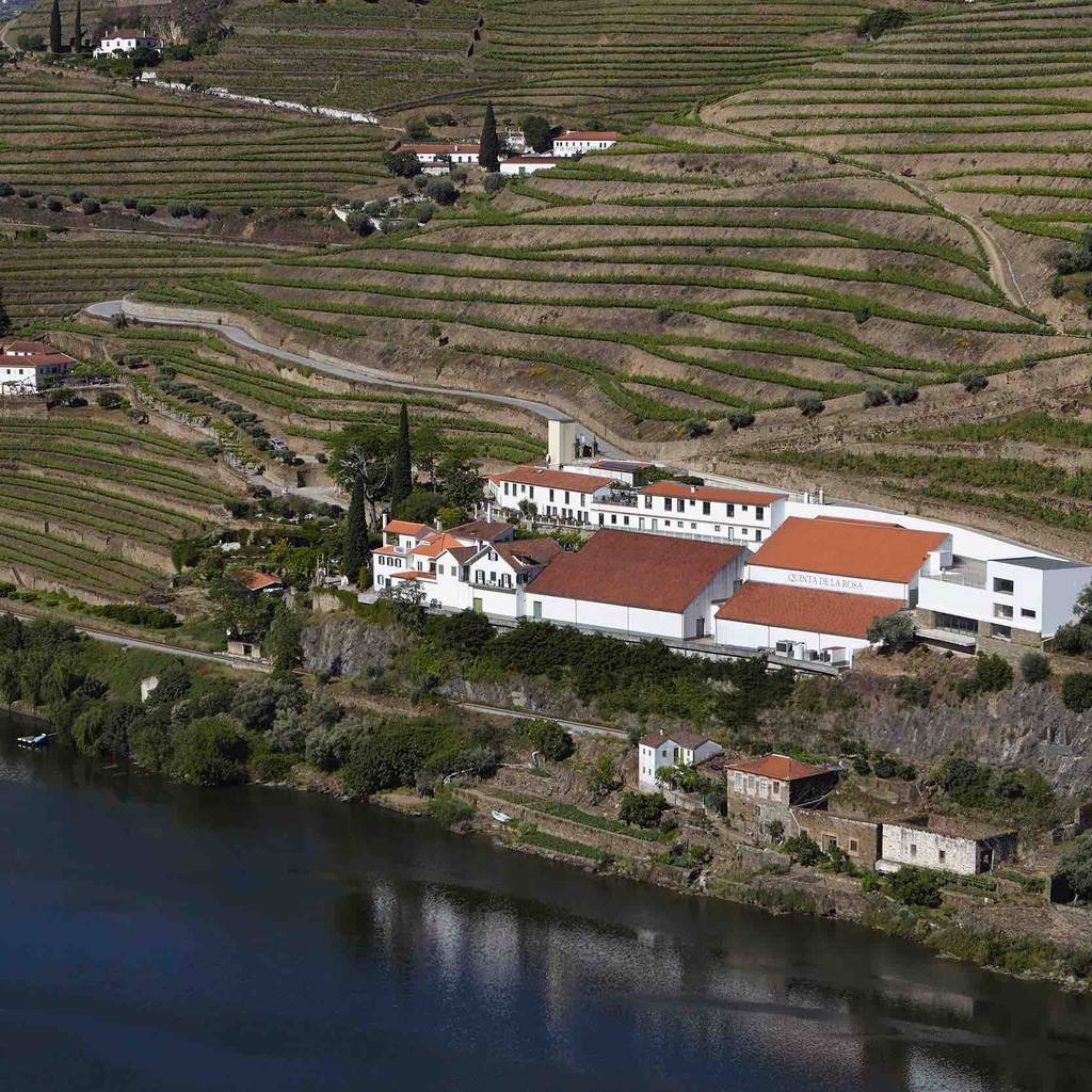 - Guided tour to Vale do Inferno vineyards