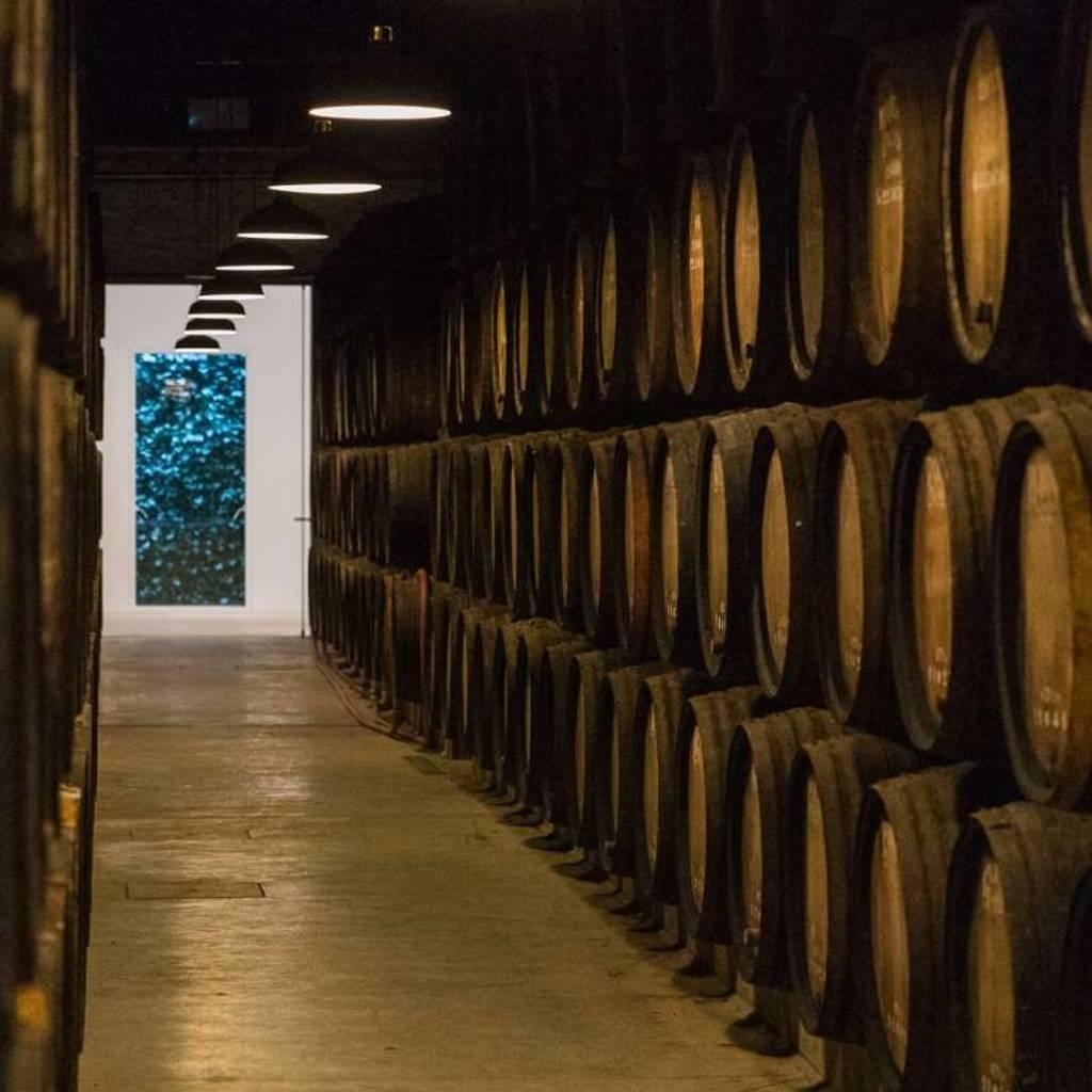Visite et dégustation Poças Selection de l'œnologue - Dégustation 2 vins AOC Douro + 2 vins de Porto