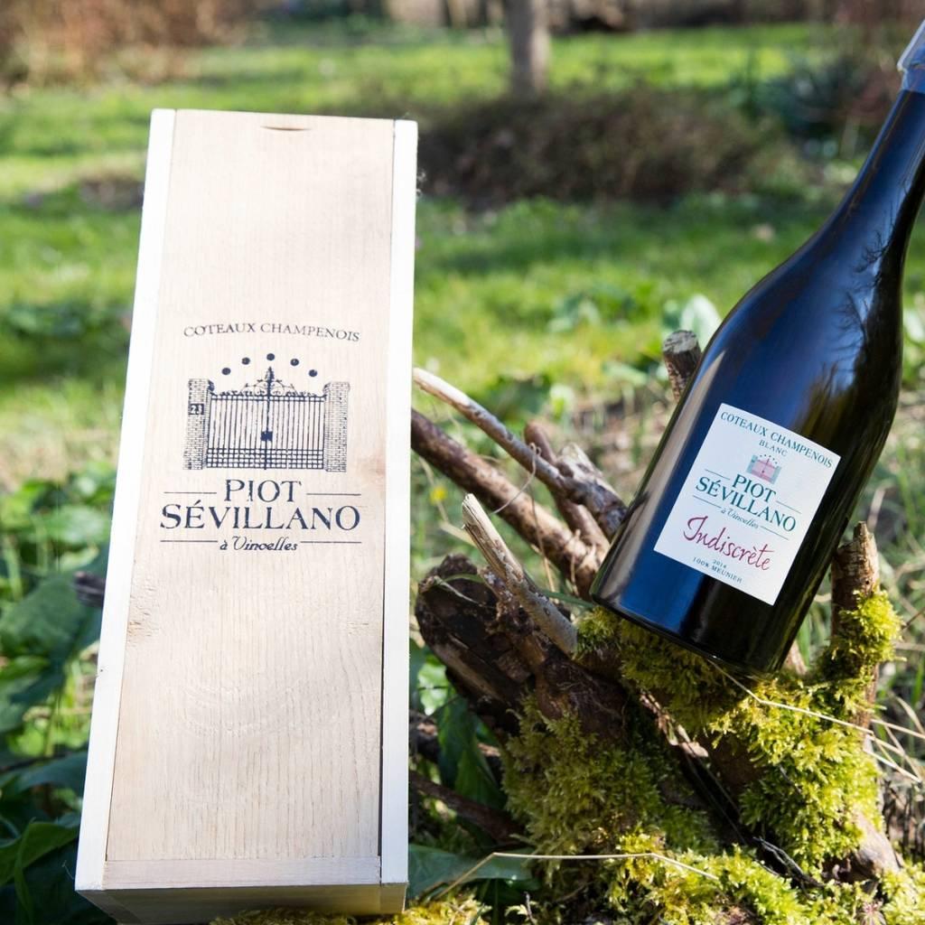 Coteaux champenois tasting