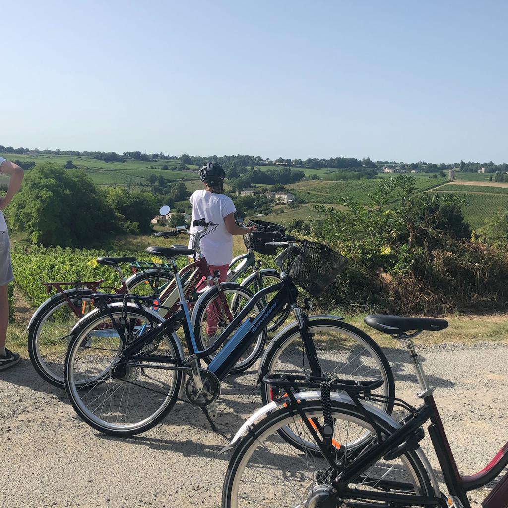 Visite Guidée du Domaine à Vélo Électrique