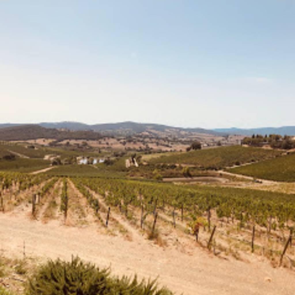 - Belguardo's Wines Experience