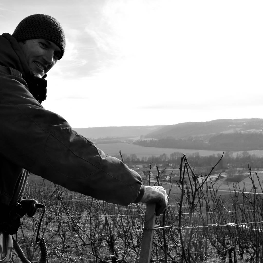 Visite du vignoble & dégustation de 2 champagnes