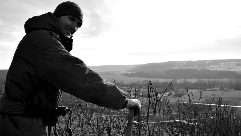Visite du vignoble & dégustation de toute notre gamme