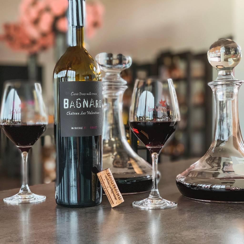 - Bezoek aan het landgoed en proeverij van onze wijnen
