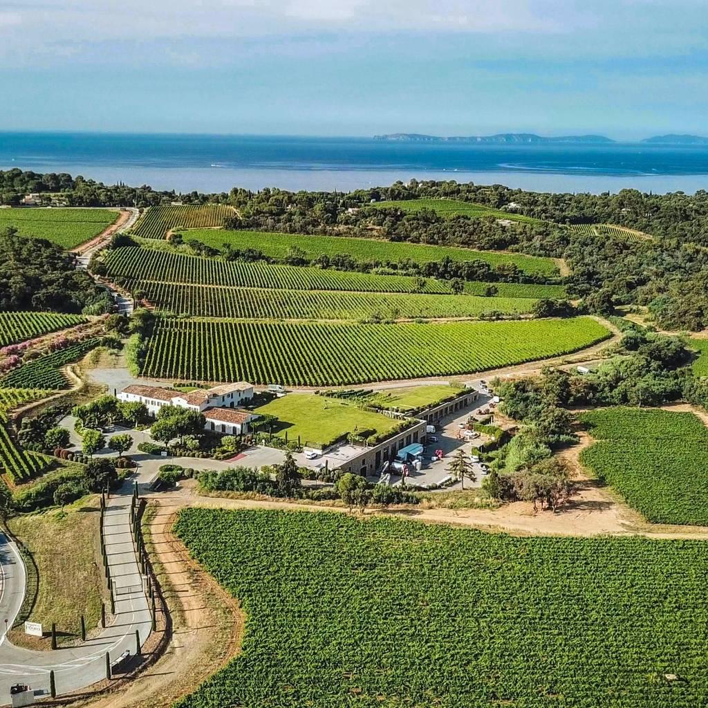 Golfe de Saint Tropez Wine Tour 1/2day