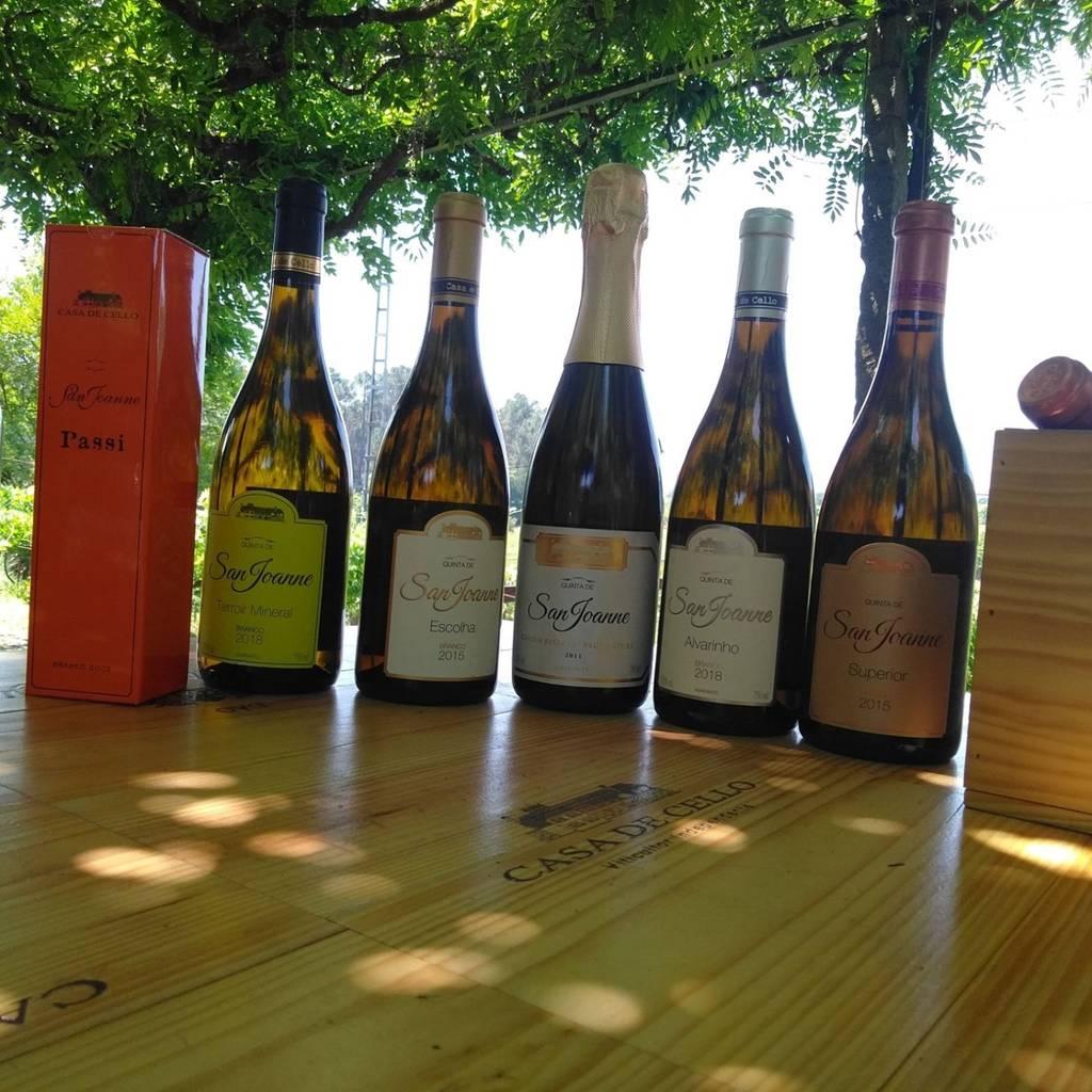 Tour del vino e degustazione di due terroir - 4 vini