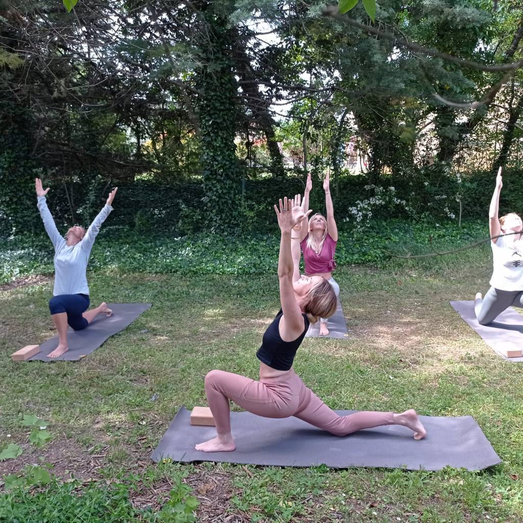 - Yoga in the Vines