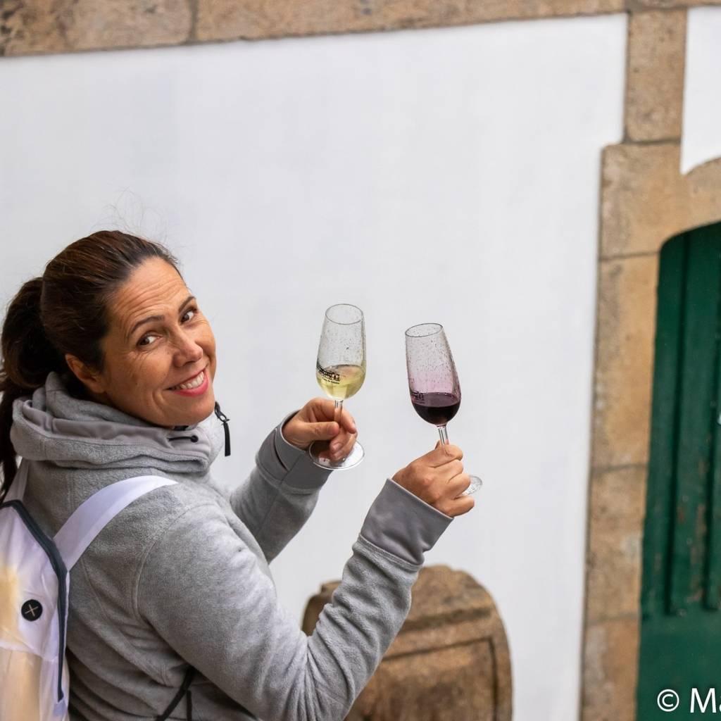 Prova de Vinhos Premium