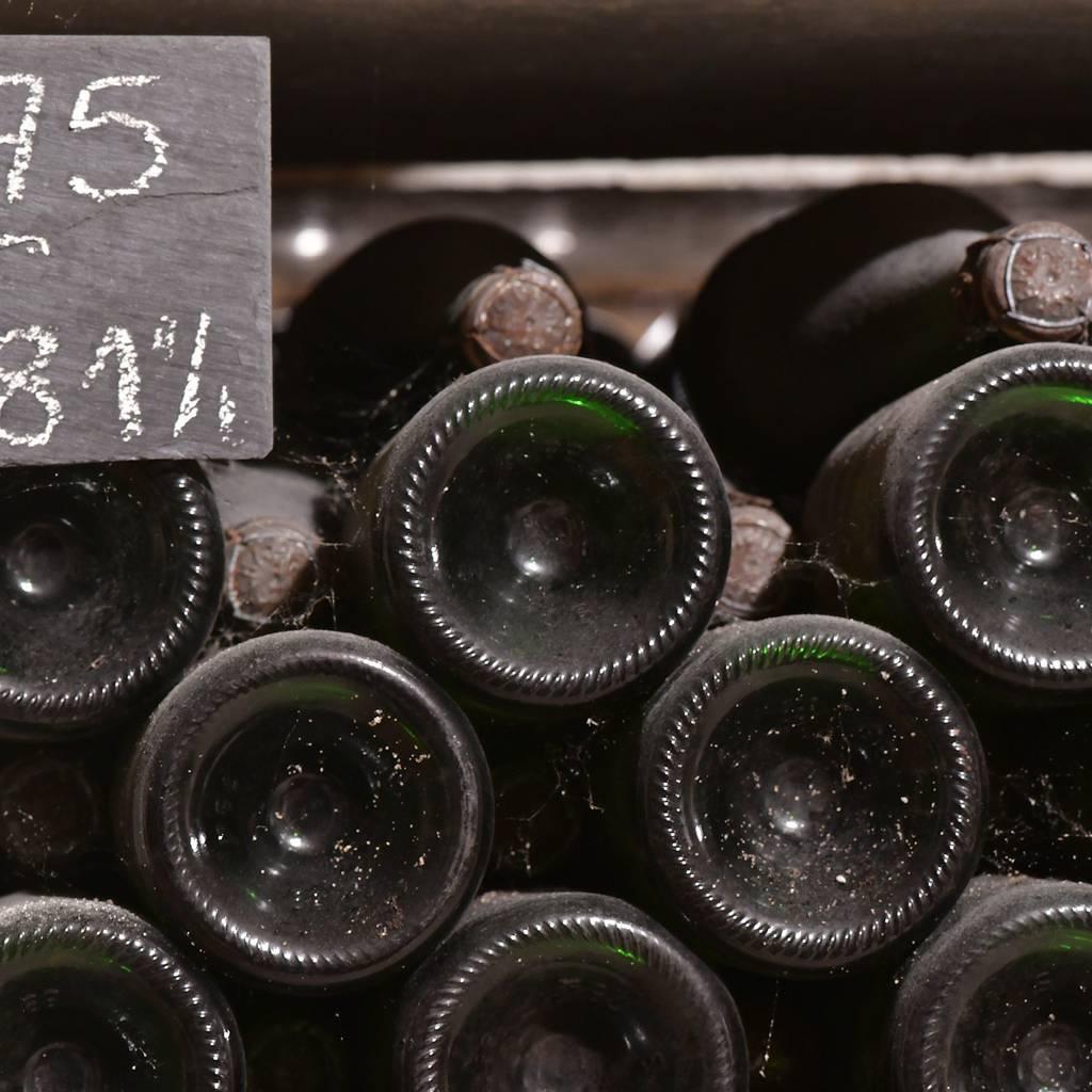 - 参观葡萄藤和酒窖,然后品尝2杯香槟