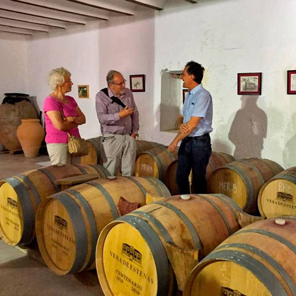 - Valencia Wine Tour: wineries in Utiel Requena