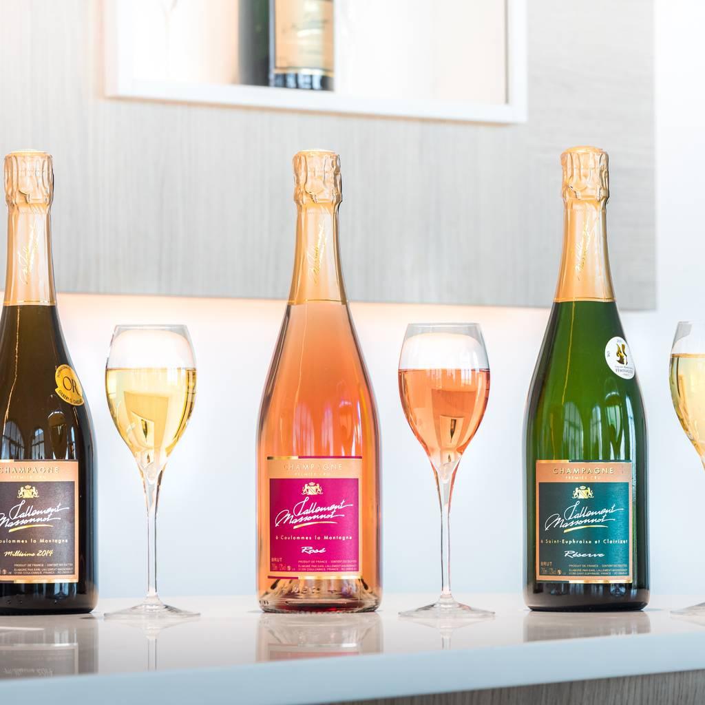- VIP Tour: processi di champagne, visita del vigneto, degustazione