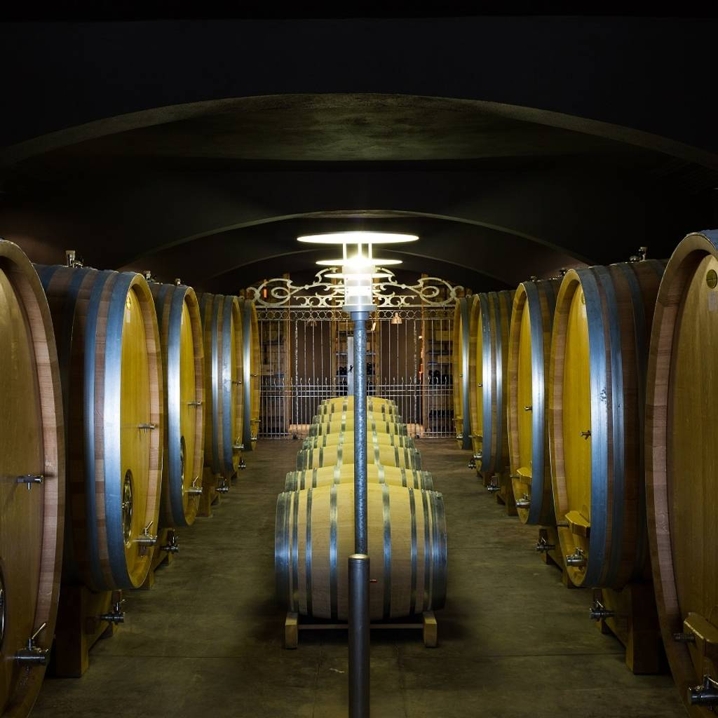 - Guided Tours of our cellars and vat rooms followed by a tasting
