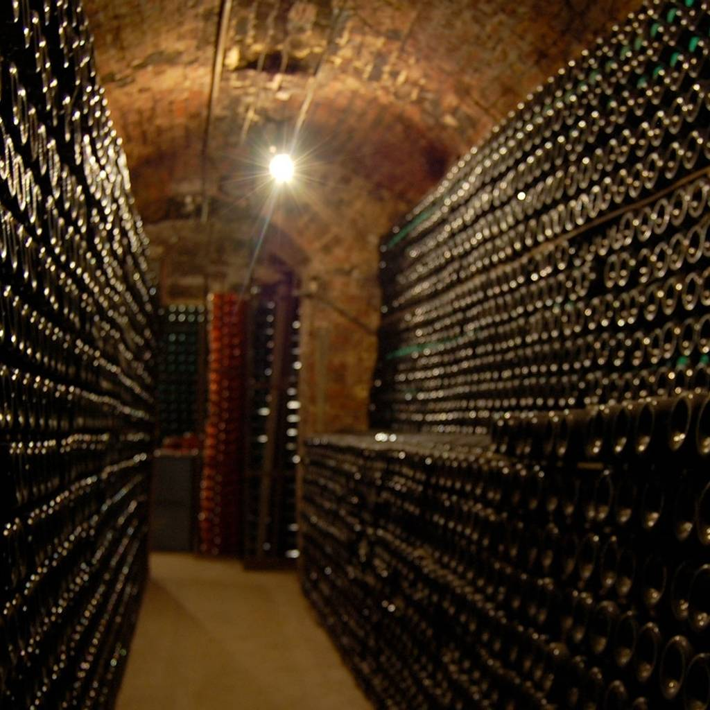 Visit of a family house and tasting of 3 champagnes