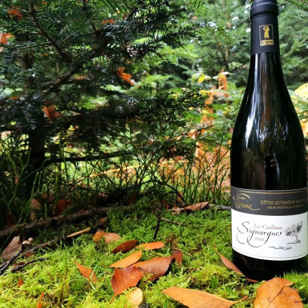 - Balade vigneronne : à la découverte du terroir de l'AOC Signargues