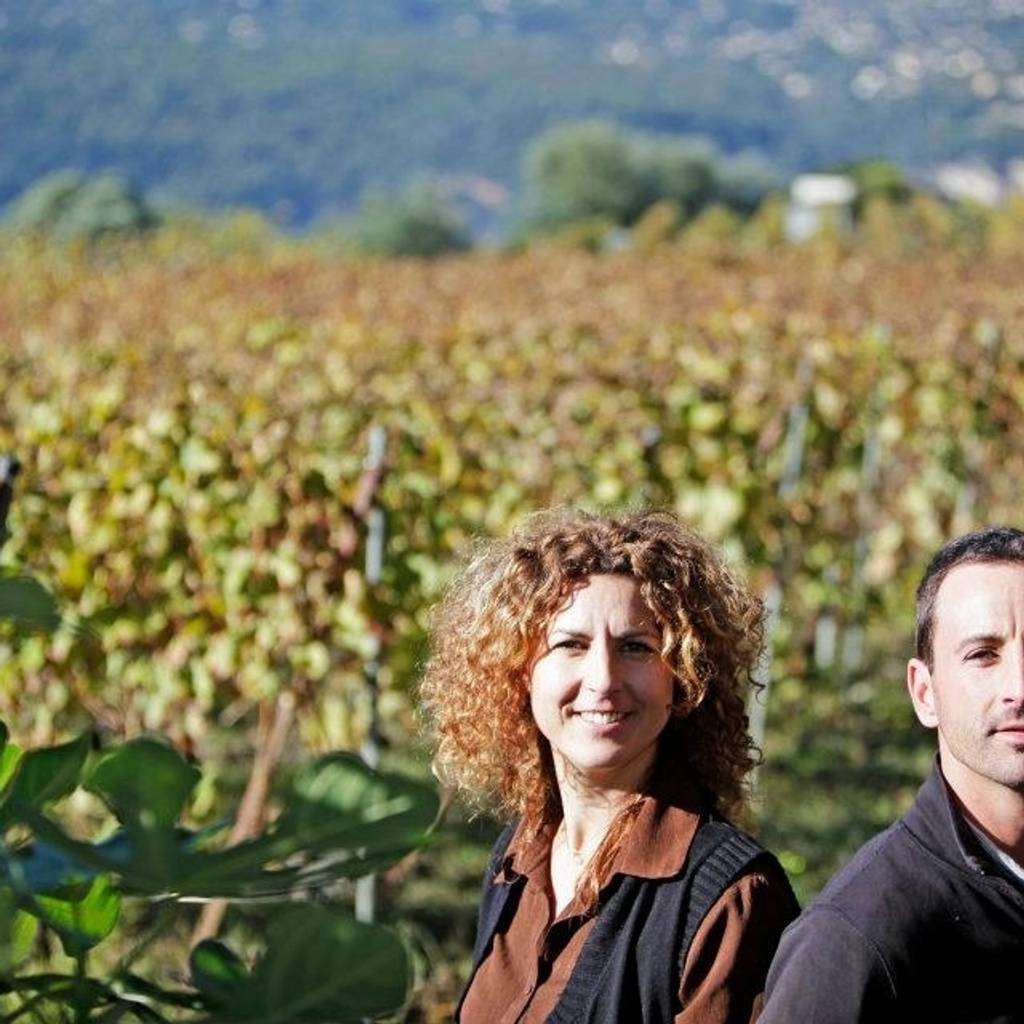 Discovery of the Niçois vineyard and the organic wines of Bellet