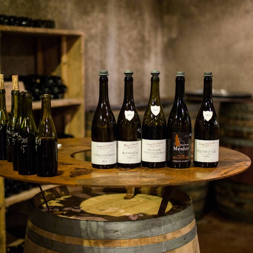 - Enter to the cellar family for a wine tasting