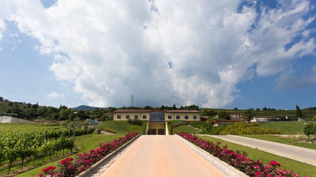 Monte Zovo Azienda Agricola