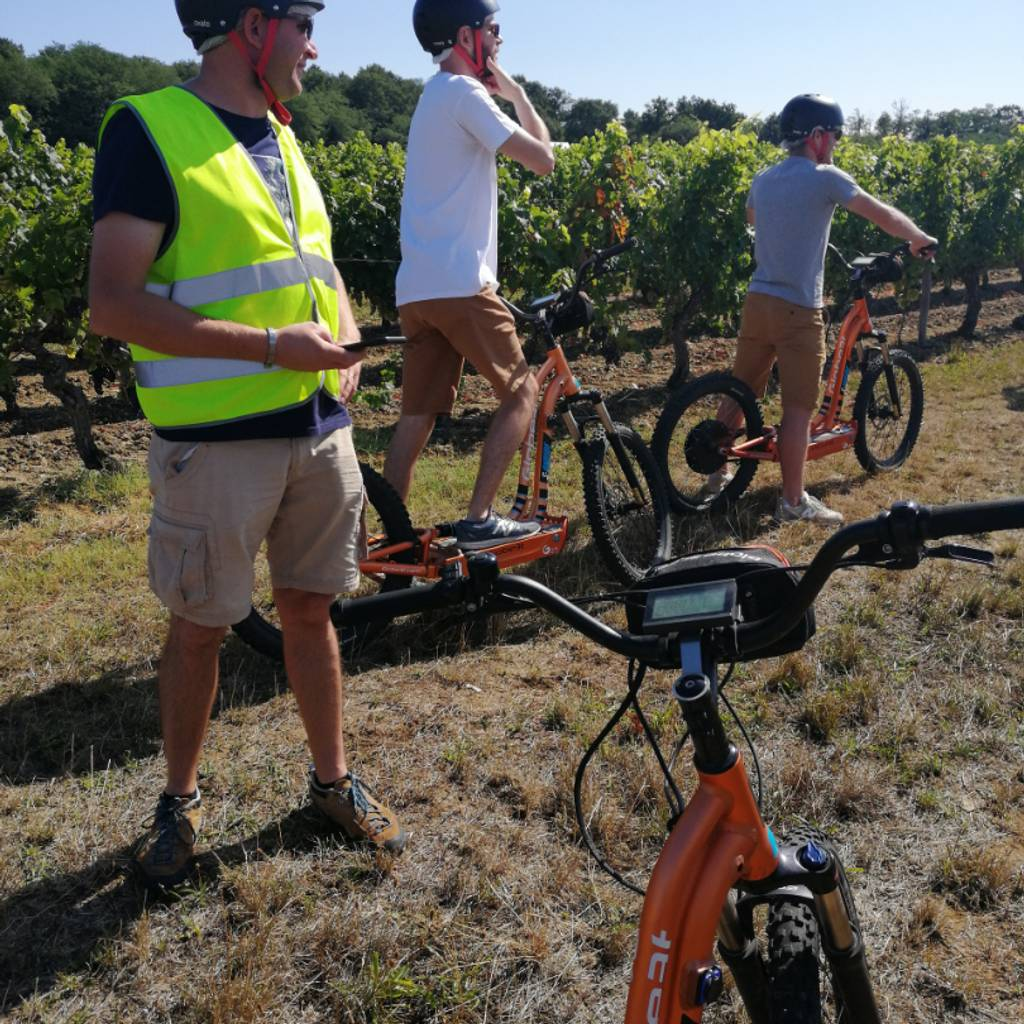 Special jaunt in the vineyards & Tasting