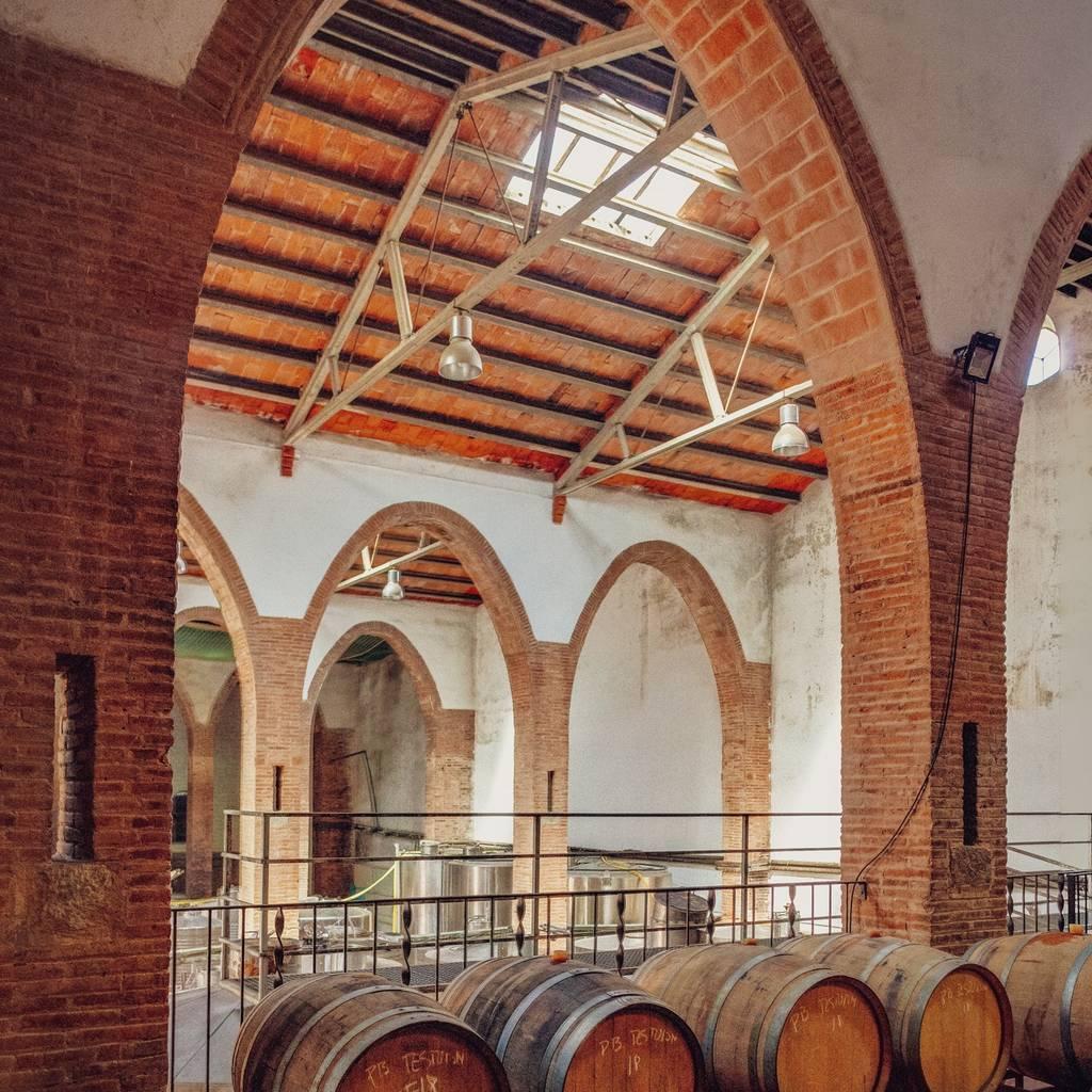 - Stroll through the vineyards