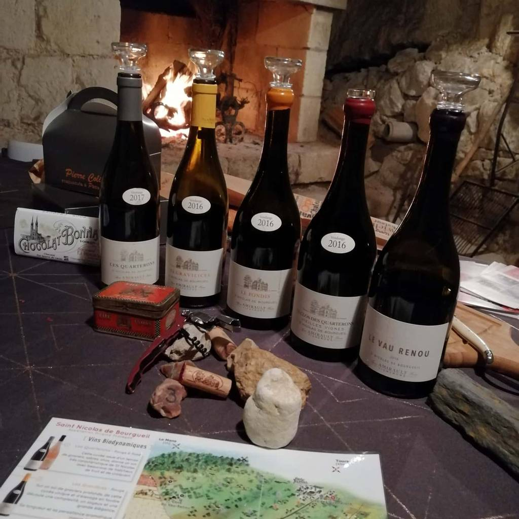 - Half-Day Oeno-Experience between the vines/cave/tasting