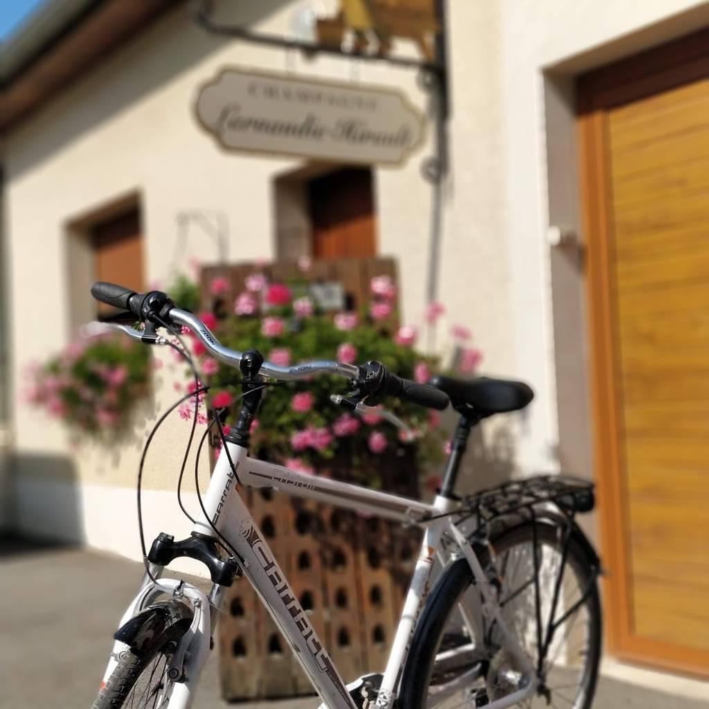 - Balade à vélo en Champagne : Journée complète entre vélo et mini-van !