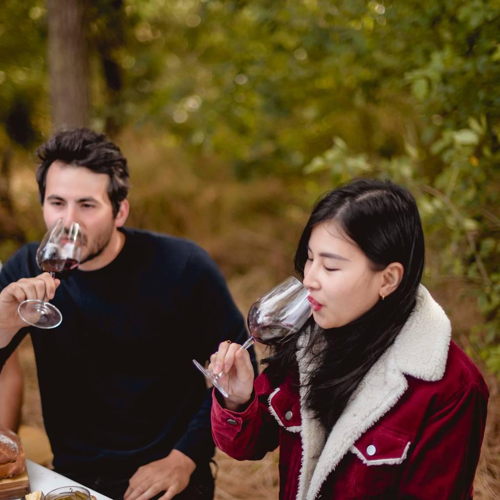 - Visita da propriedade com harmonizações de comida e vinho