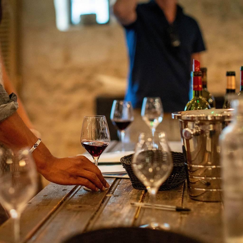 - Vine & Wine Evening: visit and tasting