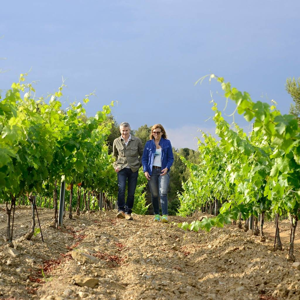 Bezoek aan het landgoed en proeverij van onze wijnen