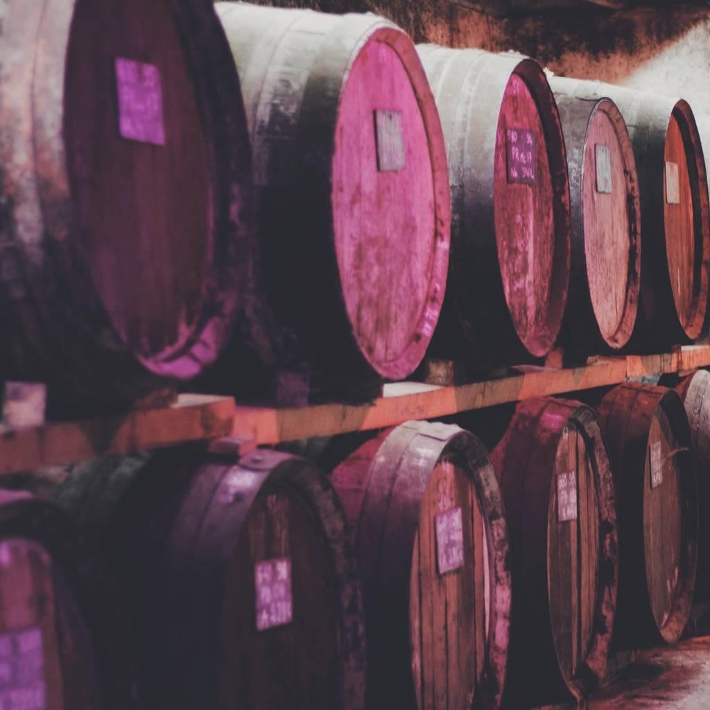 - Cata de vinos Les Frères Moine
