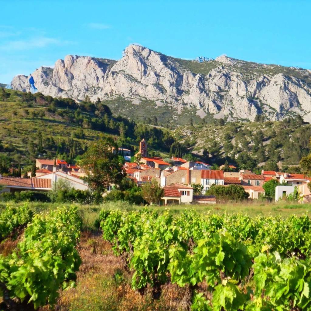 - Dégustation de 7 vins avec accords mets : charcuteries, fromages et chocolats