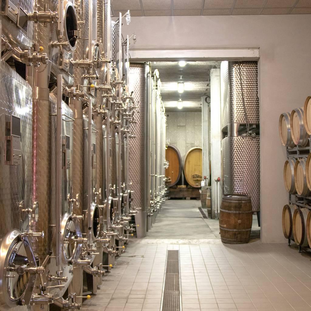 - Dégustation Découverte des Vins d'Alsace