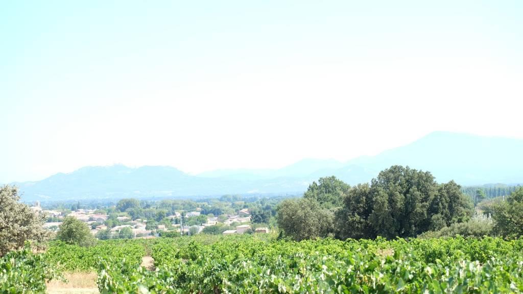 Domaine Saint-laurent