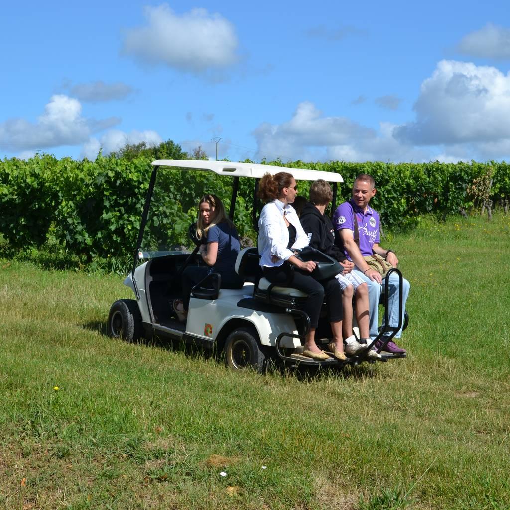 - Discovery walk at Château de Bonhoste and tasting