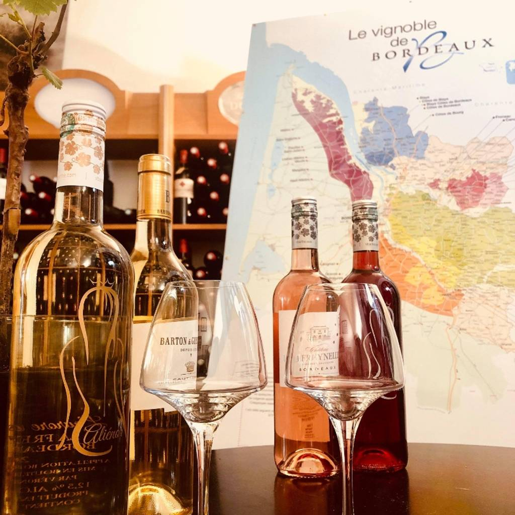 Bordeaux guided tour and wine tasting