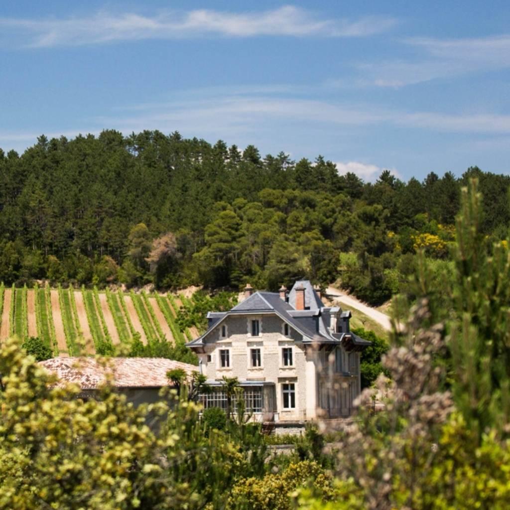 - Open Caves at Domaine de Baronarques: gourmet tasting