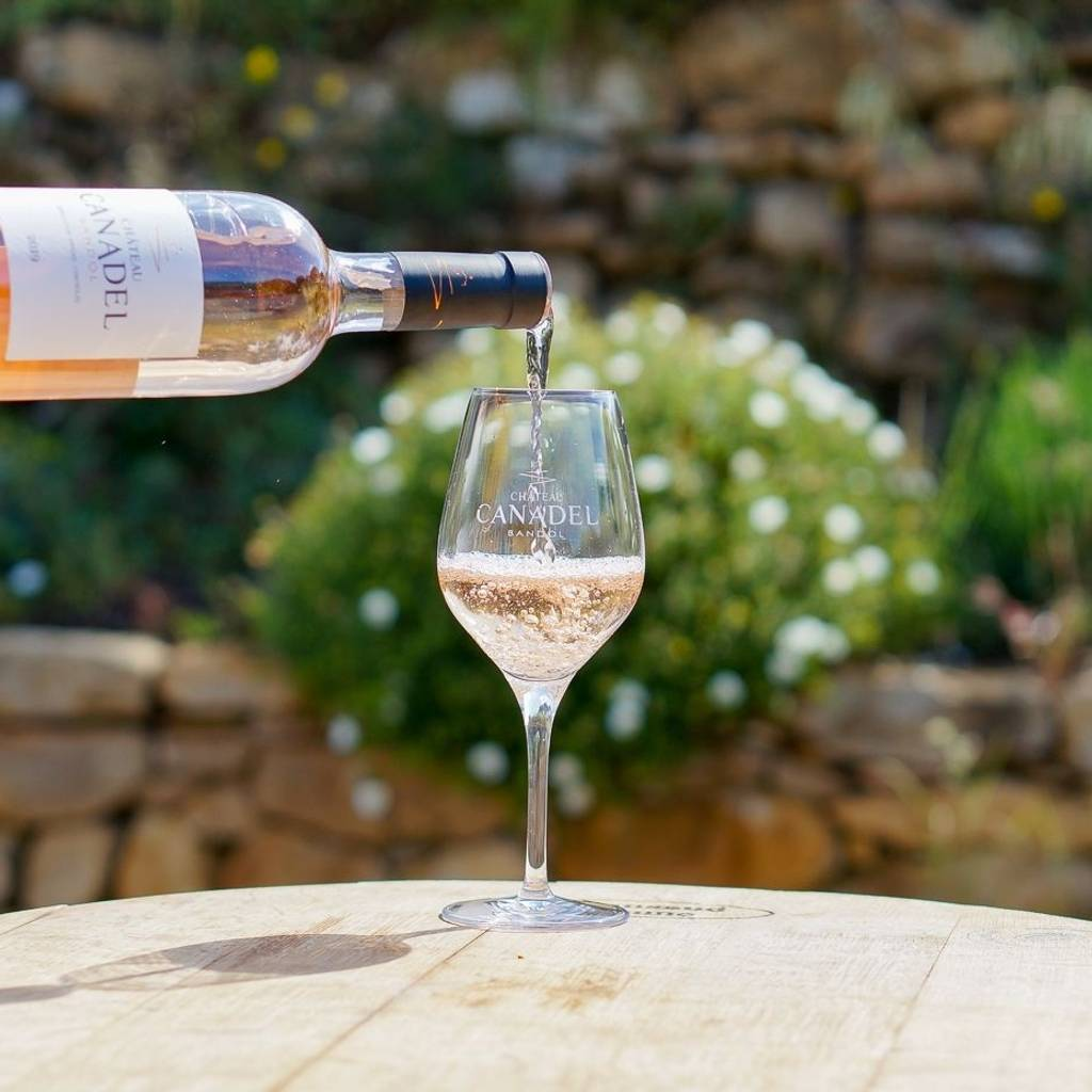Tasting: Discovery of our wines